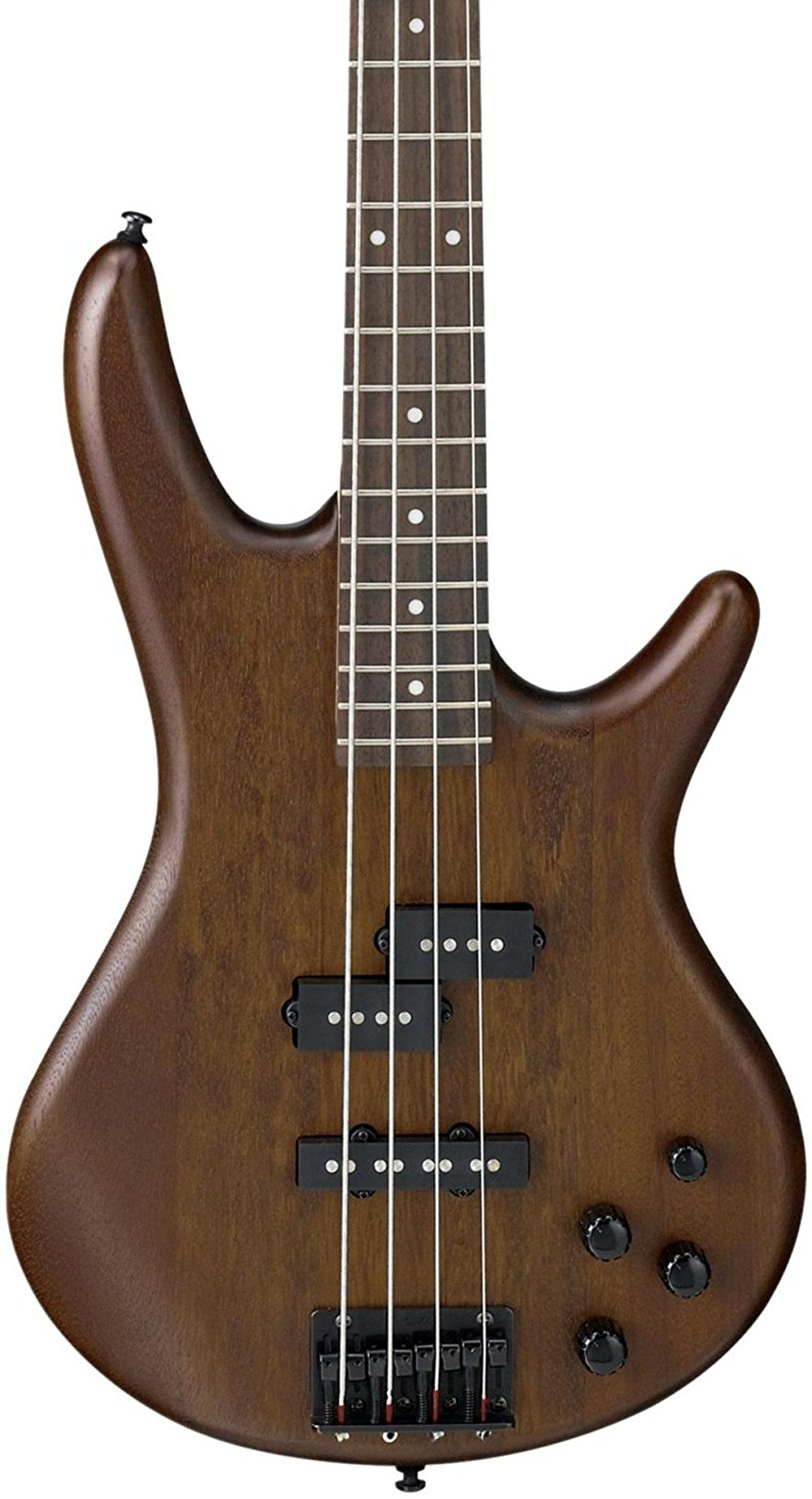 Ibanez GSR200 BWNF Product Review - Best Musical ... Bass Guitar Instrument